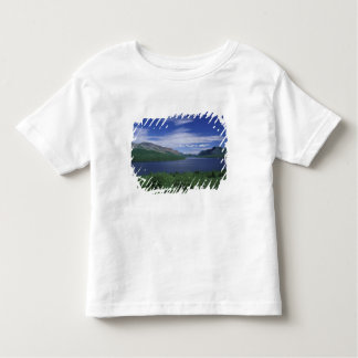 N.A., Canadá, Terranova, trucha de Grose Morne Remera