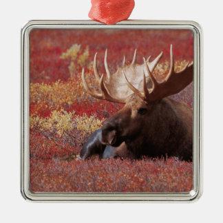 N.A., los E.E.U.U., Alaska, parque nacional de Den Ornamento Para Arbol De Navidad
