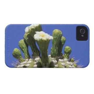 N.A., los E.E.U.U., Arizona, Tucson, desierto 2 Case-Mate iPhone 4 Carcasa