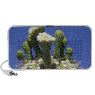 N.A., los E.E.U.U., Arizona, Tucson, desierto 2 de iPod Altavoces