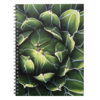 N.A., los E.E.U.U., Arizona, Tucson, desierto del  Libros De Apuntes Con Espiral