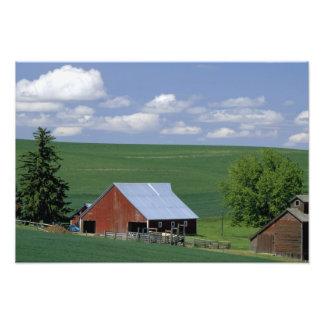 N.A., los E.E.U.U., Idaho, el condado de Latah cer Fotografía