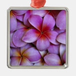N.A., los E.E.U.U., Maui, Hawaii. Flores rosados d Adorno