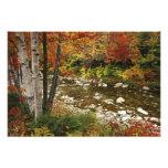 N.A., los E.E.U.U., New Hampshire, montañas blanca Fotografía