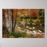 N.A., los E.E.U.U., New Hampshire, montañas blanca Póster