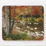 N.A., los E.E.U.U., New Hampshire, montañas blanca Tapetes De Ratón