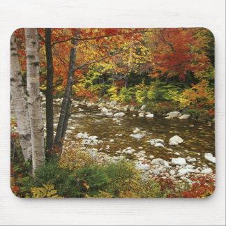 N.A., los E.E.U.U., New Hampshire, montañas blanca Tapete De Ratón