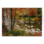 N.A., los E.E.U.U., New Hampshire, montañas blanca Tarjeta De Felicitación
