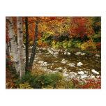 N.A., los E.E.U.U., New Hampshire, montañas blanca Postal