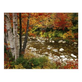 N.A., los E.E.U.U., New Hampshire, montañas Postal