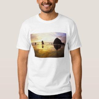 N.A., los E.E.U.U., Oregon, puesta del sol de la Camisas