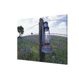N.A., los E.E.U.U., Tejas, Llano, linterna azul, Impresión En Lienzo