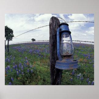 N.A., los E.E.U.U., Tejas, Llano, linterna azul, r Posters