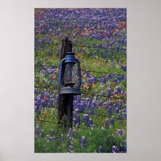 N.A., los E.E.U.U., Tejas, Llano, linterna azul y Posters