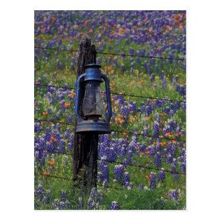 N.A., los E.E.U.U., Tejas, Llano, linterna azul y Tarjetas Postales