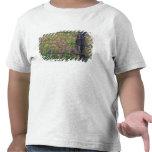 N.A, los E.E.U.U., Tejas, Lytle, poste de la cerca Camisetas