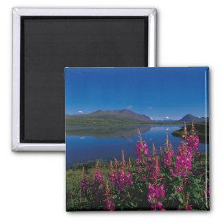 N.A., USA, Alaska, Alaska Range Common Refrigerator Magnet