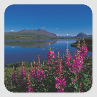 N.A., USA, Alaska, Alaska Range Common Sticker