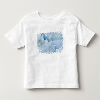 N.A., USA, Arizona, Tucson, Sonora Desert 2 Tee Shirt