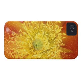 N.A., USA, Arizona, Tucson, Sonora Desert 3 iPhone 4 Covers