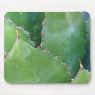 N.A., USA, Arizona, Tucson, Sonora Desert Mouse Pad
