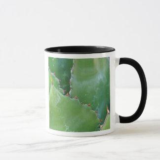 N.A., USA, Arizona, Tucson, Sonora Desert Mug