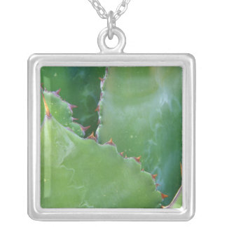 N.A., USA, Arizona, Tucson, Sonora Desert Silver Plated Necklace