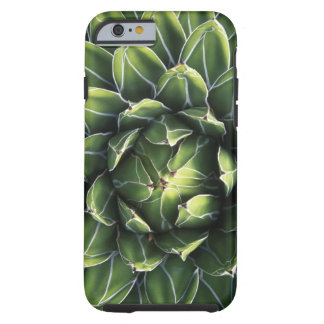N.A., USA, Arizona, Tucson, Sonora Desert Tough iPhone 6 Case