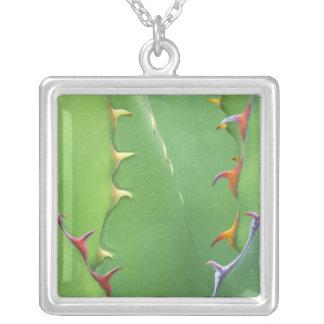 N.A., USA, AZ, Phoenix, Desert Botanical 2 Silver Plated Necklace