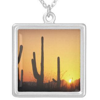 N.A., USA, AZ, Saguaro NP, Saguaro Sunset Silver Plated Necklace