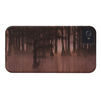N.A., USA, Georgia, George Smith State Park. iPhone 4 Case-Mate Cases