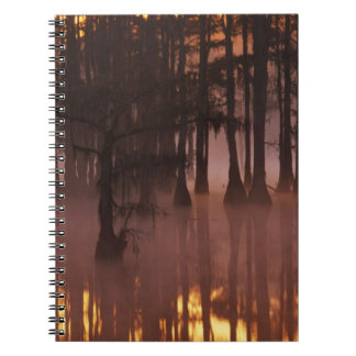 N.A., USA, Georgia, George Smith State Park. Notebook
