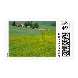 N.A., USA, Idaho, Latah County, near Genesee. Postage