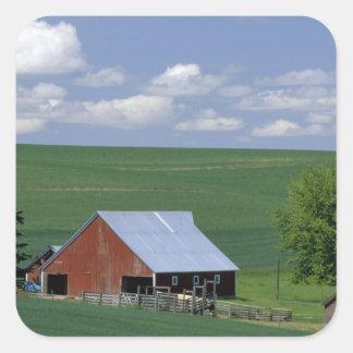 N.A., USA, Idaho, Latah county near Genesee. Square Sticker