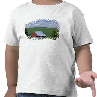 N.A., USA, Idaho, Latah county near Genesee. Tshirt