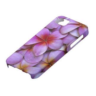 N.A., USA, Maui, Hawaii. Pink Plumeria blossoms. iPhone 5 Case