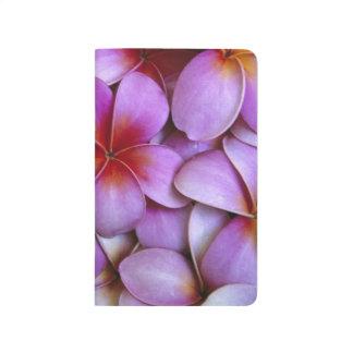 N.A., USA, Maui, Hawaii. Pink Plumeria blossoms. Journal