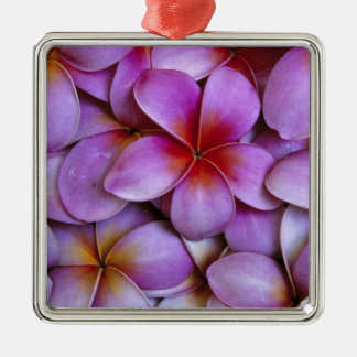 N A USA Maui Hawaii Pink Plumeria blossoms Christmas Ornament