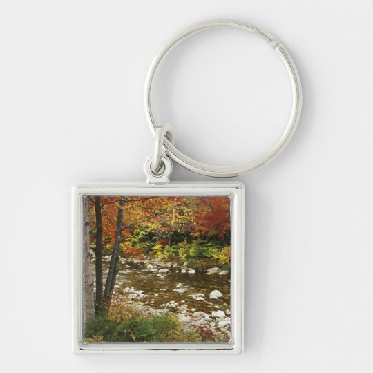 N.A., USA, New Hampshire, White Mountains, Keychain