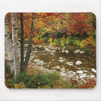N.A., USA, New Hampshire, White Mountains, Mousepad