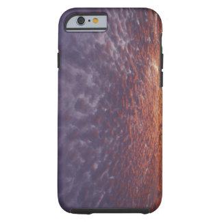 N.A., USA, New Mexico, near Las Cruces, Tough iPhone 6 Case