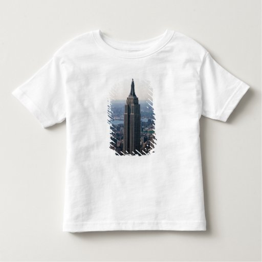 N.A., USA, New York, New York City. The Empire Toddler T-shirt