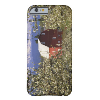 N.A., USA, Oregon, Hood River County. Red Barely There iPhone 6 Case