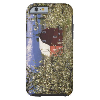 N.A., USA, Oregon, Hood River County. Red Tough iPhone 6 Case
