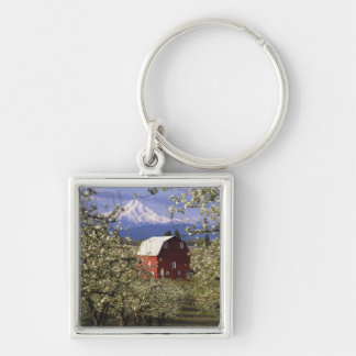 N.A., USA, Oregon, Hood River County. Red Keychain