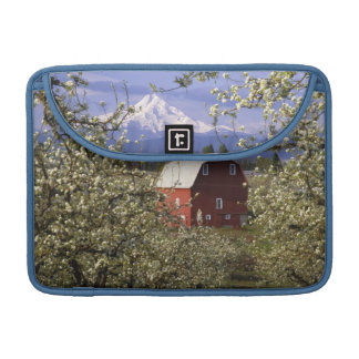 N.A., USA, Oregon, Hood River County. Red Sleeves For MacBooks