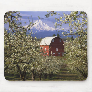N.A., USA, Oregon, Hood River County. Red Mouse Pad