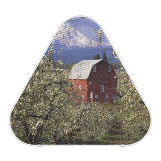 N.A., USA, Oregon, Hood River County. Red Speaker