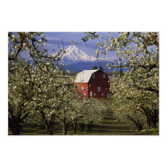 N.A., USA, Oregon, Hood River County. Red Poster