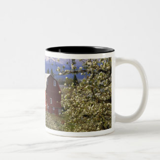 N.A., USA, Oregon, Hood River County. Red Two-Tone Coffee Mug
